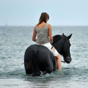 Provo Ponies Horseback Riding in Turks and Caicos Islands